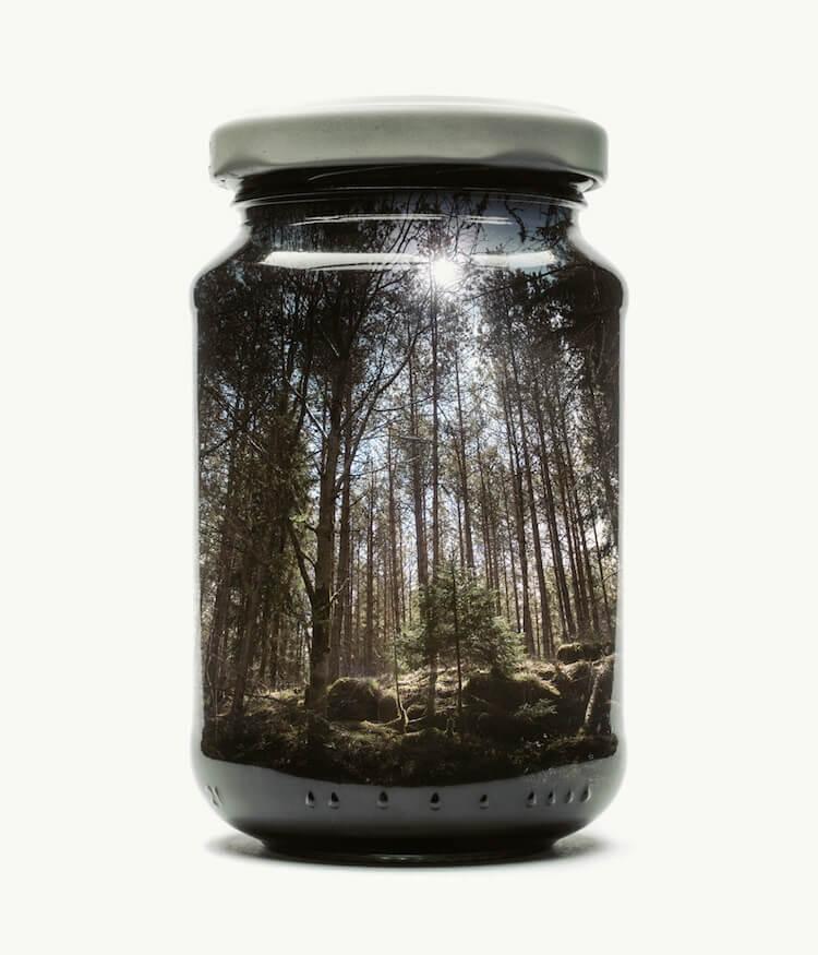 Фотографии природы в стекляных банках, фото 8