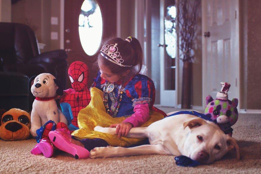 собака из приюта, фото 4
