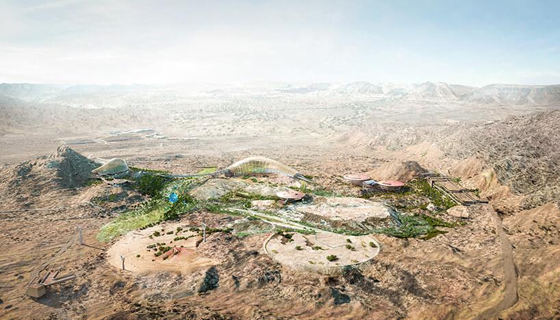 Оманский ботанический сад, фото 4