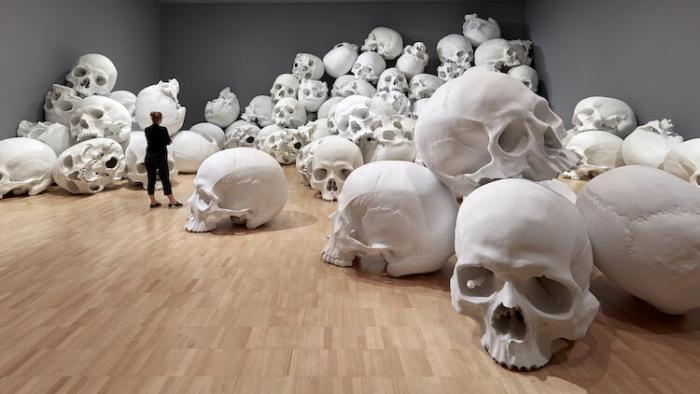 100 гигантских черепов разбросаны в огромных музейных галереях