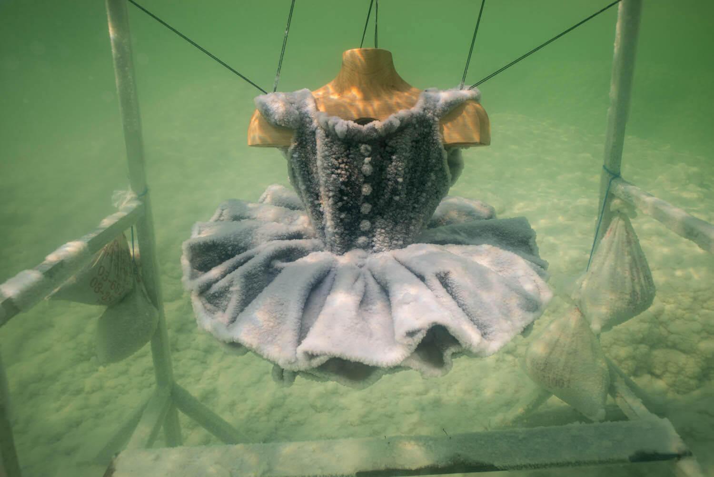 скульптуры из морской соли, Сигалит Ландау, Фото 2
