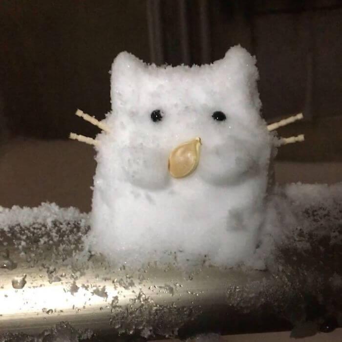 снегопад в Токио, японские снеговики, Фото 20