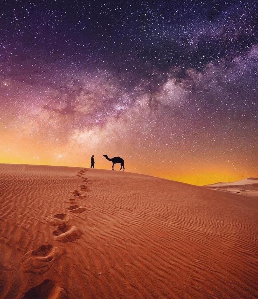 Сказочные фотографии животных, мир Роберта Янса, фото 11
