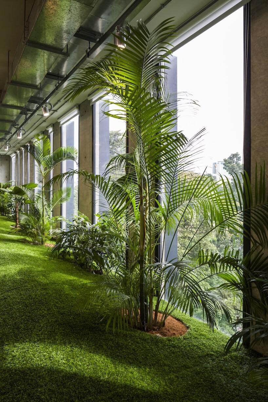 Зелёные офисы, фото 7