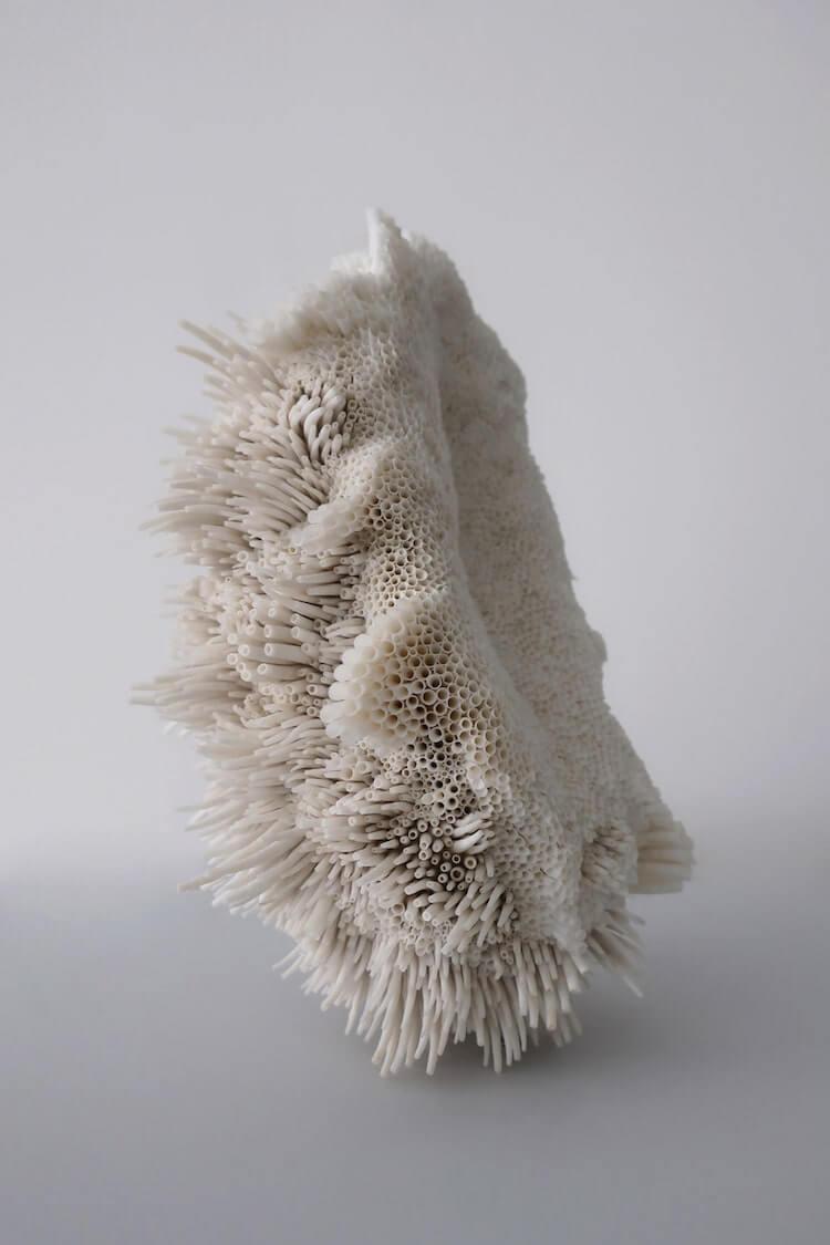 скульптуры из обычных ракушек, фото 7
