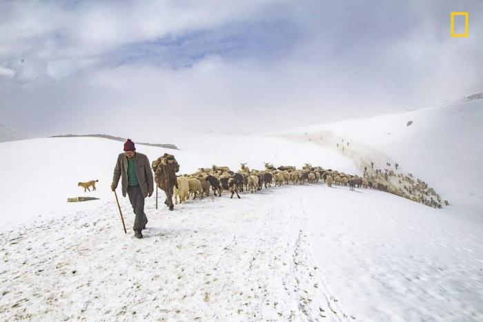 National Geographic радует фотографов. Стартовал ежегодный конкурс travel-фотографии 2018