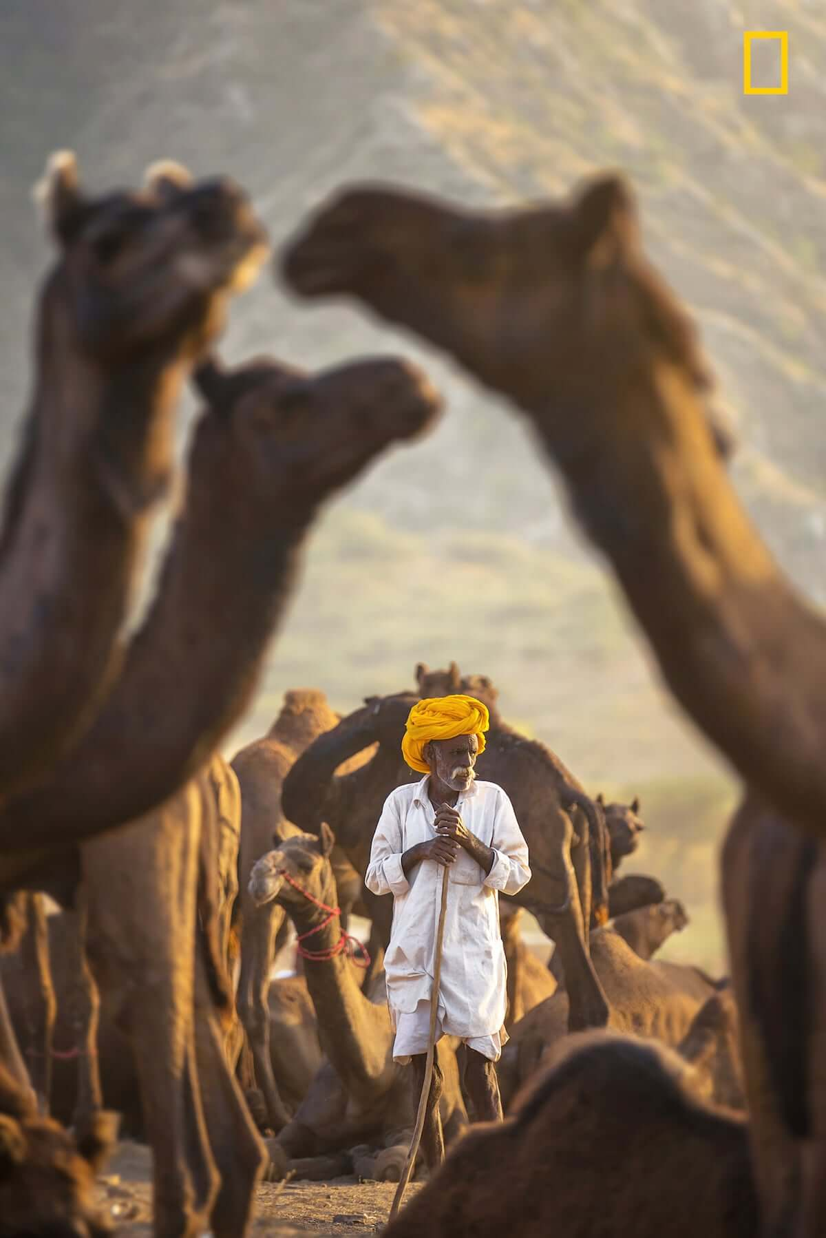Конкурс National Geographic Travel Photographer of the Year 2018, фото 5